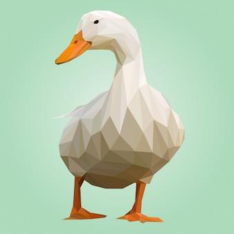 Un vecteur polygonal de canard blanc