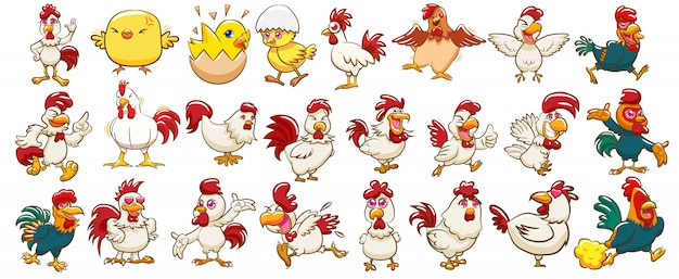 Vecteur de poulet set clipart