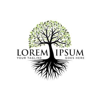 Vecteur de racine de conception de logo d'arbre inspiration de conception de logo d'arbre de vie