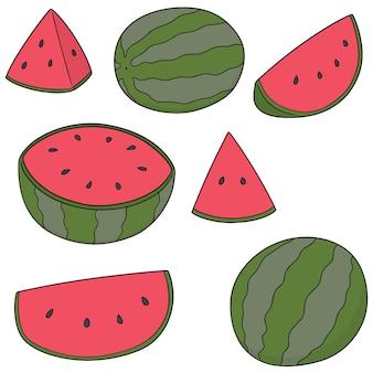 Vecteur série de melon d'eau