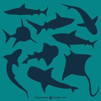 Vecteur silhouettes requins