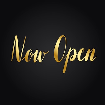 Vecteur de style typographie maintenant ouvert