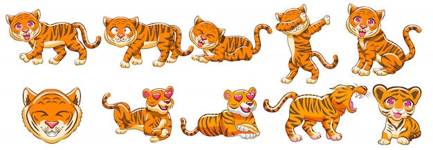 Vecteur de tigre set clipart