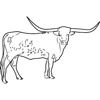 Vecteur de vache texas longhorn dessiné main esquissée à la main