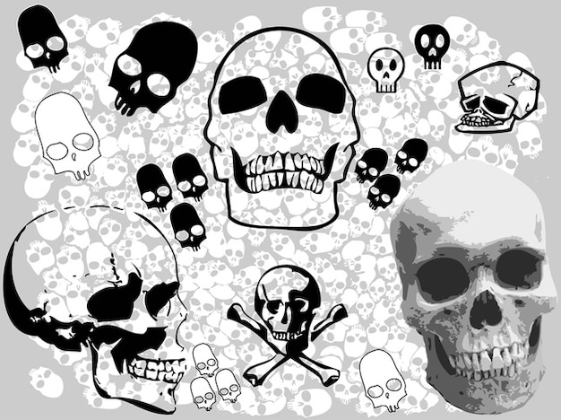 Vecteurs crânes