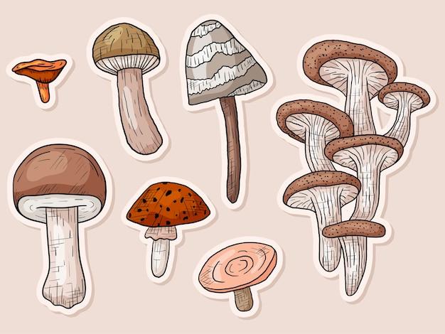Vector automne doodle sertie de champignons autocollants forêt dans le style d'art en ligne.