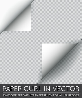 Vector paper page curl avec shadow isolé.