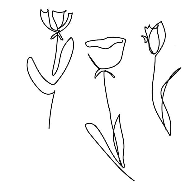 Vector une seule ligne dessinée ensemble de fleurs fleur handdrawing contour illustration isolé sur