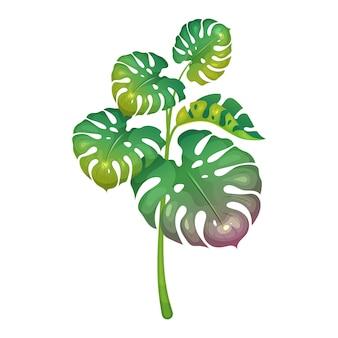 Végétation de la jungle