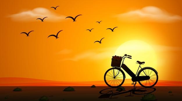 Vélo et silhouette d'oiseaux au coucher du soleil