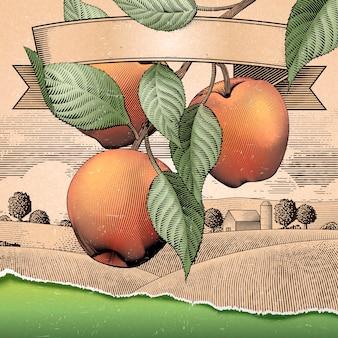 Verger de pommiers rétro, gravure de paysages de campagne à des fins d'utilisation, fond attrayant