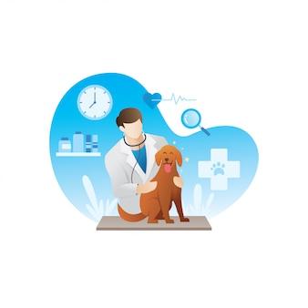 Vétérinaire avec des animaux domestiques