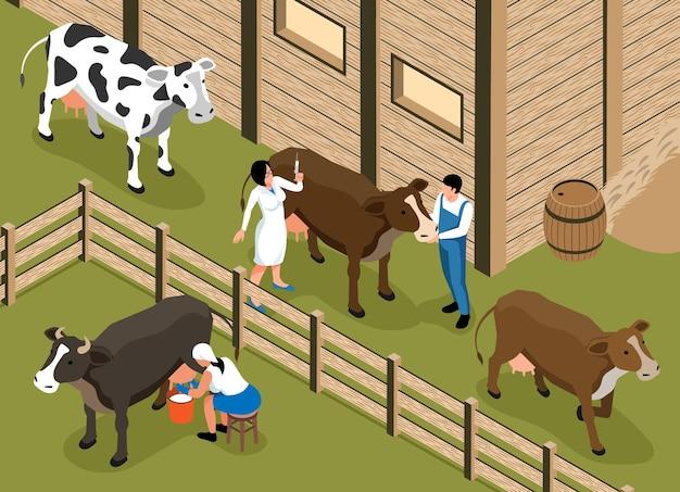Le vétérinaire du bétail visite la composition isométrique de la ferme laitière familiale avec une femme qui traite la vache dans l'illustration du paddock