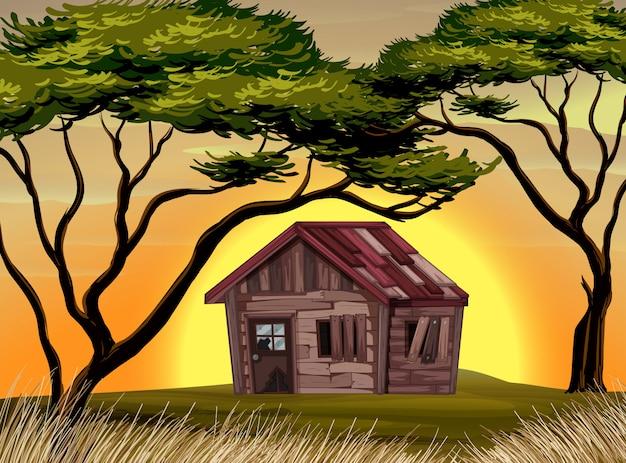 Vieux chalet dans le champ au coucher du soleil