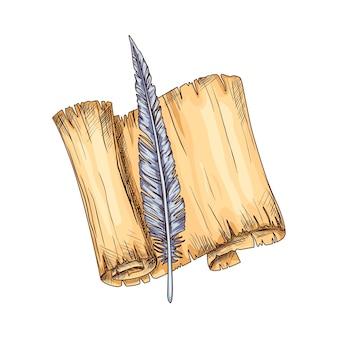 Vieux parchemin ouvert et plume. concept d'éducation et de sagesse. icône de vecteur pour l'éducation