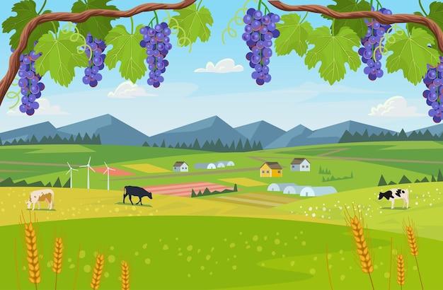 Village de fond avec des champs de serres et de raisins au premier plan du paysage.