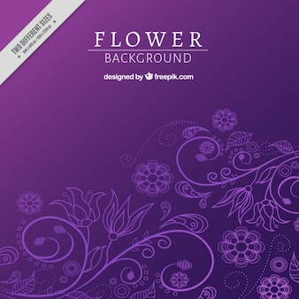 Violet fond floral