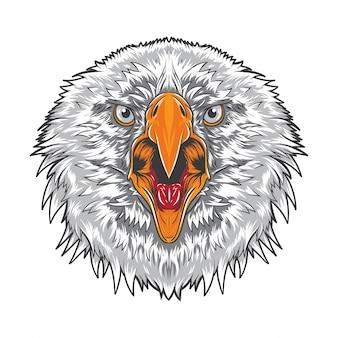 Visage d'aigle en colère