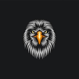 Visage d'aigle