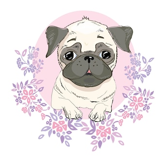 Visage de chien carlin - illustration vectorielle isolé
