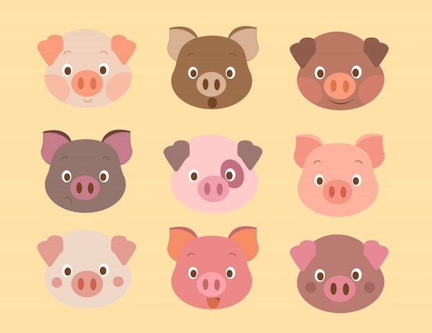Visage de modèle de porc