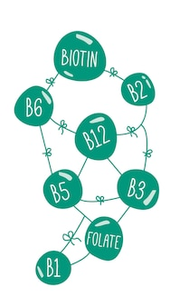 Vitamines b complexe doodle concept suppléments nutritionnels folate de biotine