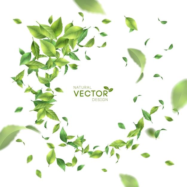 Vol vert ou chute de feuilles