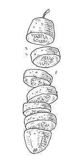 Voler des morceaux de concombres frais vintage vector illustration noir gravure isolé sur blanc