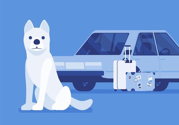 Voyage en voiture, voyage en voiture avec chien de compagnie