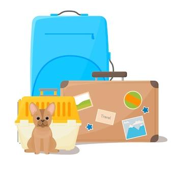 Voyager avec des valises pour animaux de compagnie et un transporteur pour un chien bulldog heureux à côté de la cage de transport