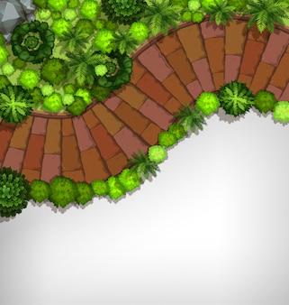 Vue aérienne de la bordure du jardin