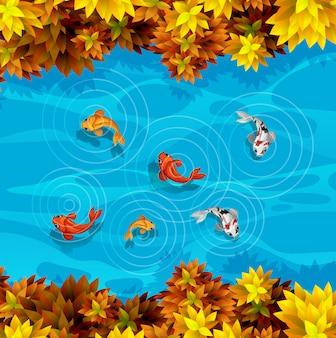 Une vue aérienne de l'étang à poissons