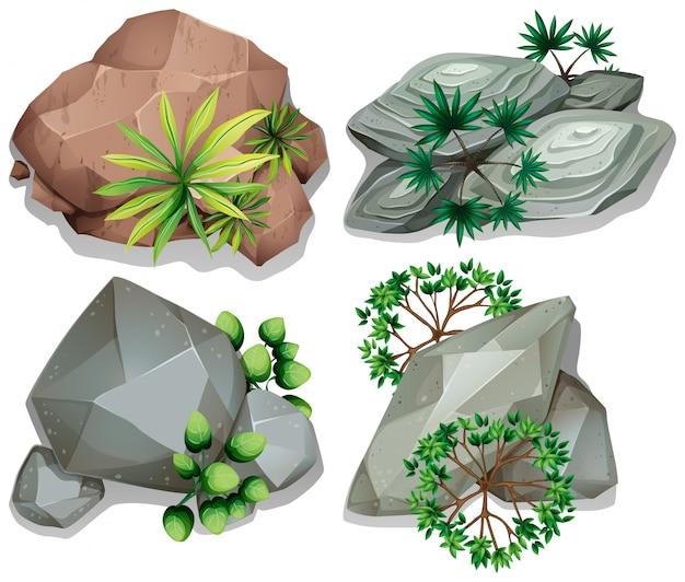 Vue aérienne, de, rochers, à, arbres, blanc