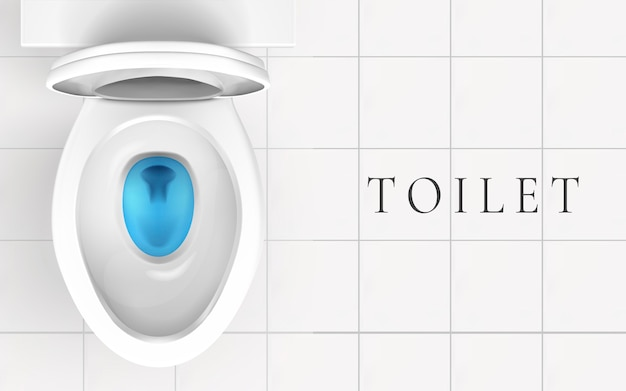 Vue de dessus de la cuvette des toilettes et du sol de la salle de bain