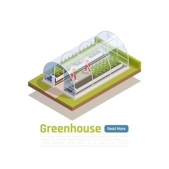 Vue isométrique extérieure d'une serre hydroponique moderne avec 2 travailleurs plantant des semis et contrôlant la bannière des conditions climatiques