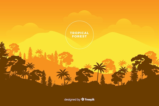 Vue panoramique de la belle forêt tropicale dans les tons orange