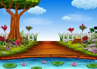 Vue sur la forêt avec le lac