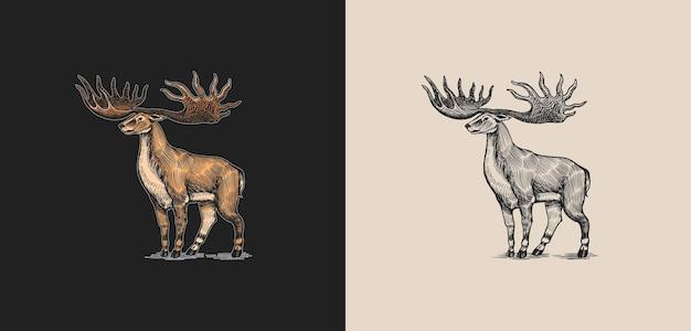 Wapiti irlandais ou cerf géant ou grande corne mammifères préhistoriques animal éteint vecteur rétro vintage
