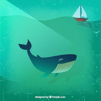 Whale et en bateau