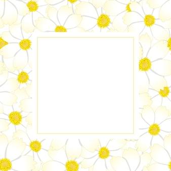 White cosmos flower banner card