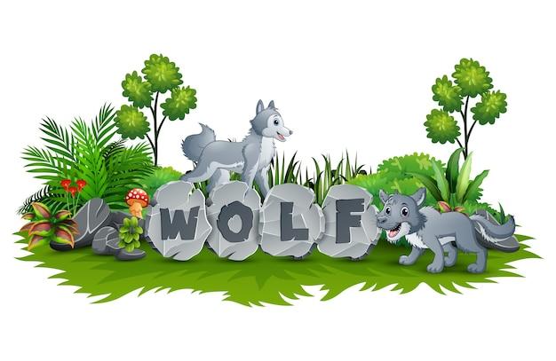 Wolf jouent dans le jardin