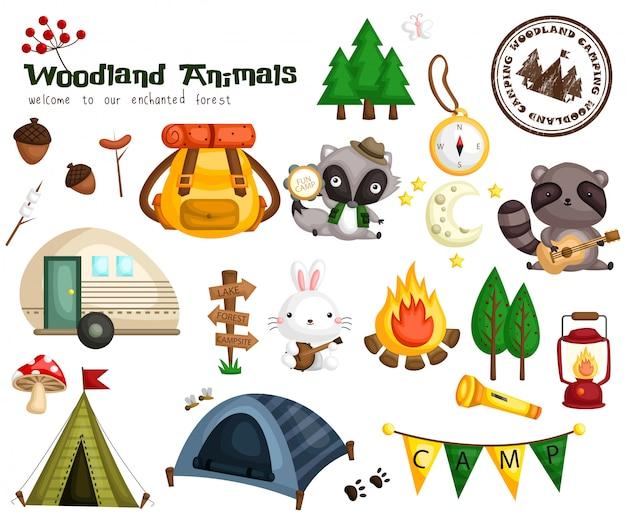 Woodland animal camping