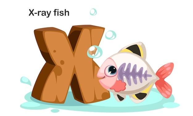 X pour les poissons radiographiés