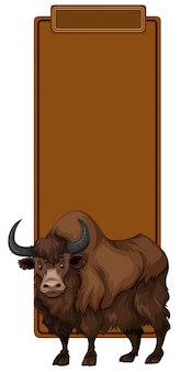 Un yak sur un modèle vierge