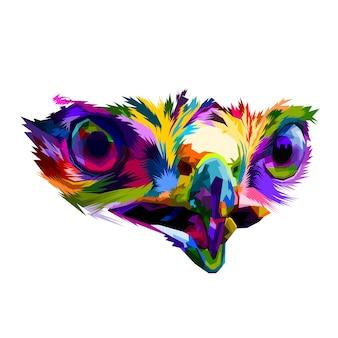 Des yeux colorés d'aigle très près concept isolé