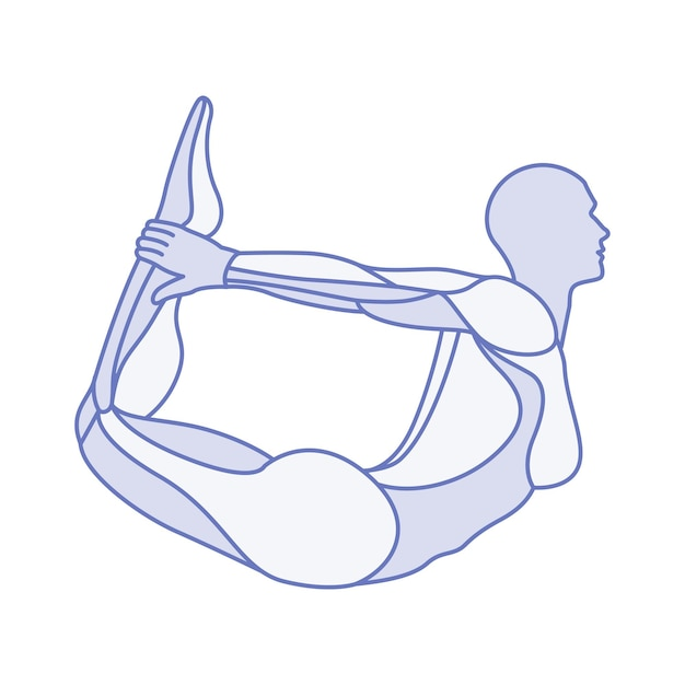 Yoga pose des parties des muscles du corps de l'anatomie féminine