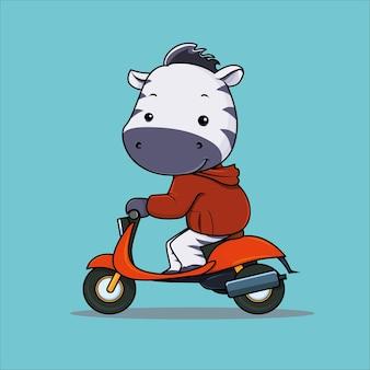 Zèbre mignon équitation moto cartoon illustration vecteur premium