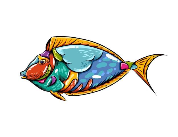 Zentangle de poisson de réservoir bleu avec de belles couleurs de mélange et une bouche assez grande
