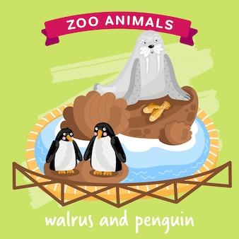 Zoo animal, morse et manchot