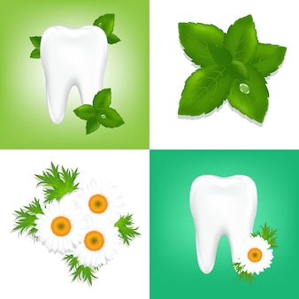 4 elementos de diseño sobre tema estomatológico